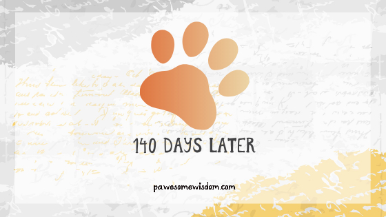 140 days later